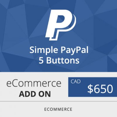 Toronto Ecommerce Website Design Company