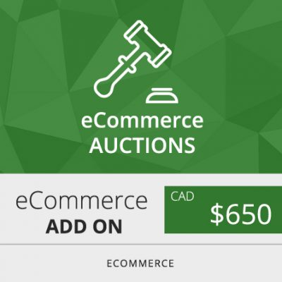 Toronto ecommerce auctions web design