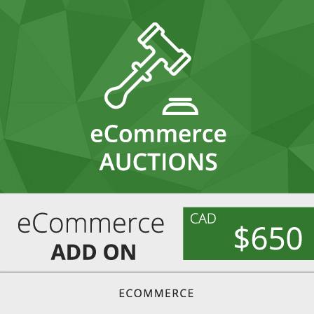 Toronto ecommerce auctions web design