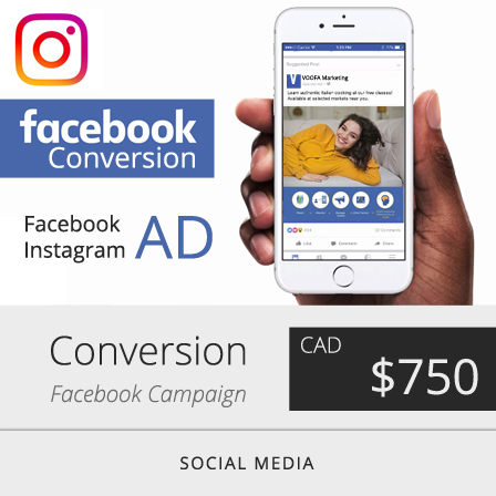 Facebook Conversion Ad Campaign Marketing