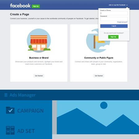 Mississauga Facebook Training